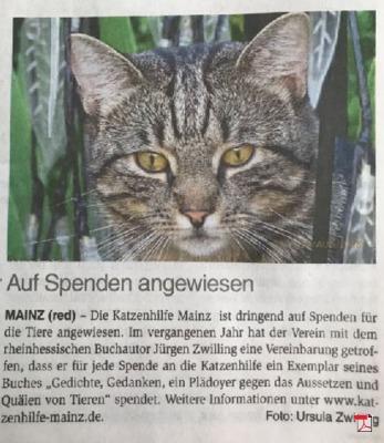 Auf Spenden angewiesen - Katzenhilfe Mainz e.V. - Mainzer Wochenblatt 09.05.2018