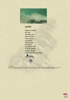 Naturbild ( Mensch, Gesellschaft, Natur) - Gedicht - Gedanken