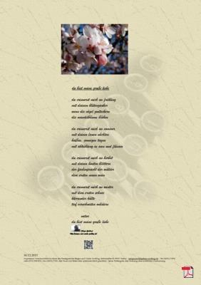Du bist meine große Liebe (Natur, Mensch, Familie, Gesellschaft) - Gedichte - Gedanken
